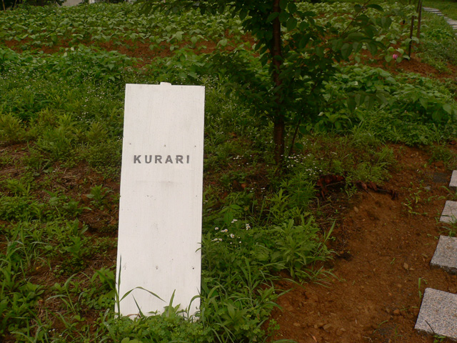 KURARI / クラリ (和歌山県紀ノ川市)
