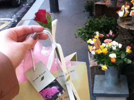 le 29 Octobre:お花と雨