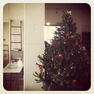 111125_arbre